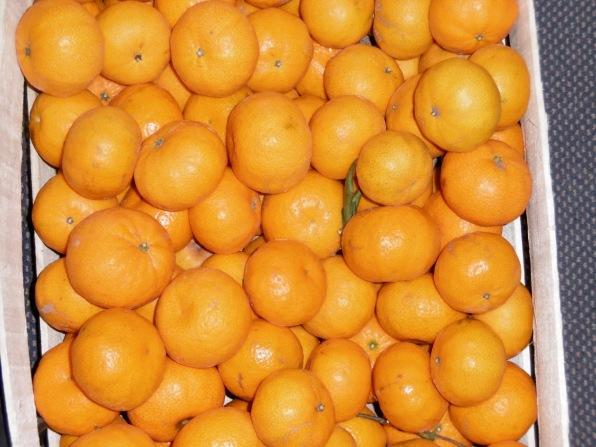 Mandarinen en Masse