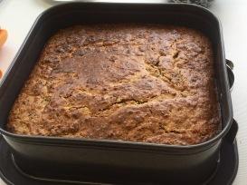 Ricotta-Haselnuß-Cheesecake-3